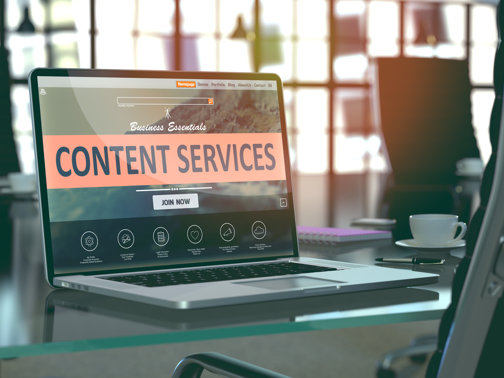 Content Marketing Services | MINDVIBZ®